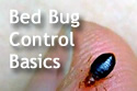 Text 'Bed Bug Control Basics,' with close-up of a bed bug on human skin in background.